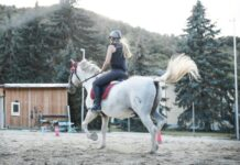 Kaski jeździeckie damskie