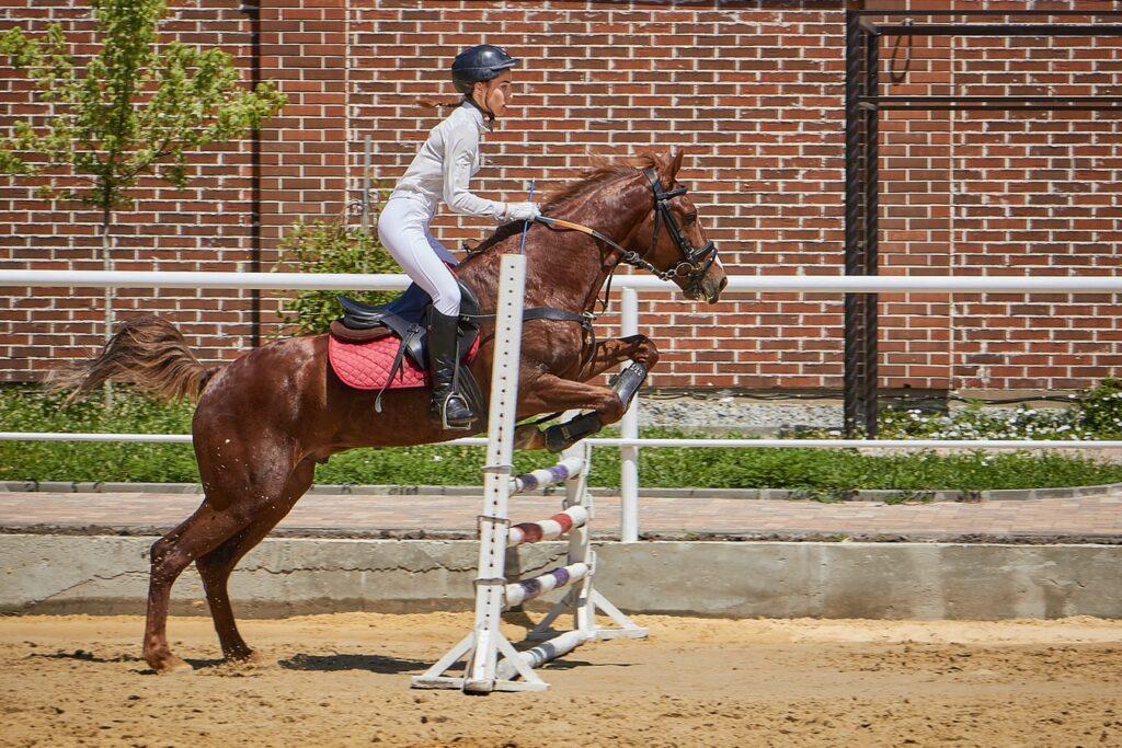 Kaski jeździeckie dla kobiet